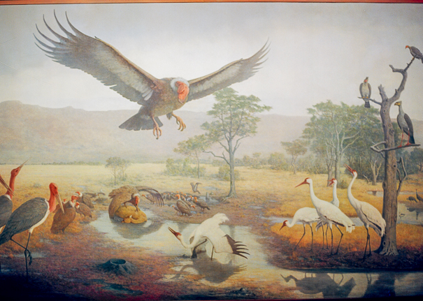 natural_museum_painting