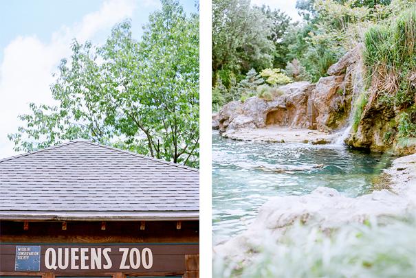queens_zoo